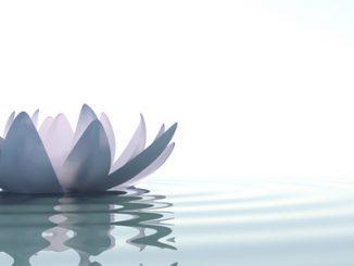 Meditasi dan Doa Adalah Sesuatu Yang Berbeda dalam praktek sehari hari